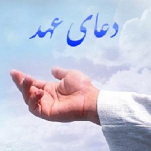 دانلود آخرین ورژن دعای عهد برای اندروید Doaye Ahd v1.2